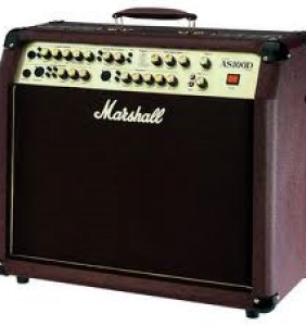 Marshall AS-100D acoustic magnari